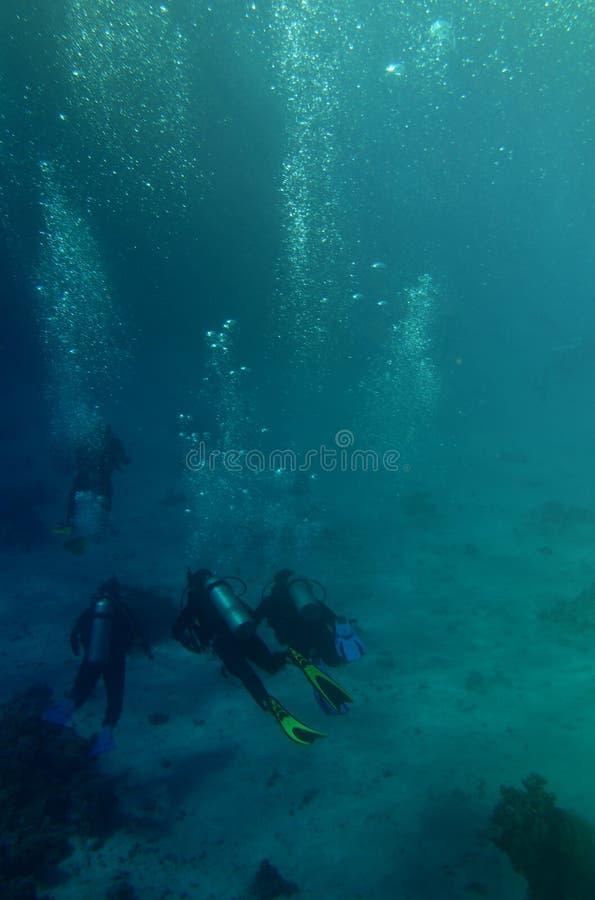 Scuba divers in the sea stock photo