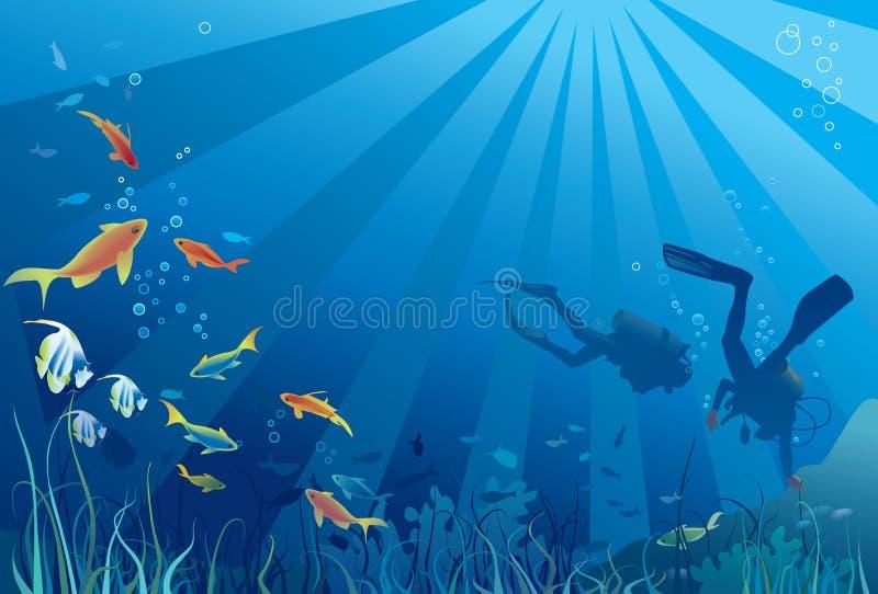 Scuba Divers, Underwater Sea Life Stock Photography