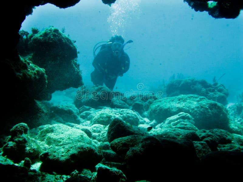 Scuba Diving royalty free stock photo