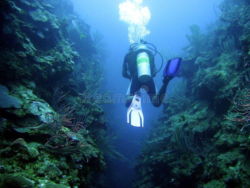 Scuba Diving in Belize. Scuba Diver in Belize Canyon