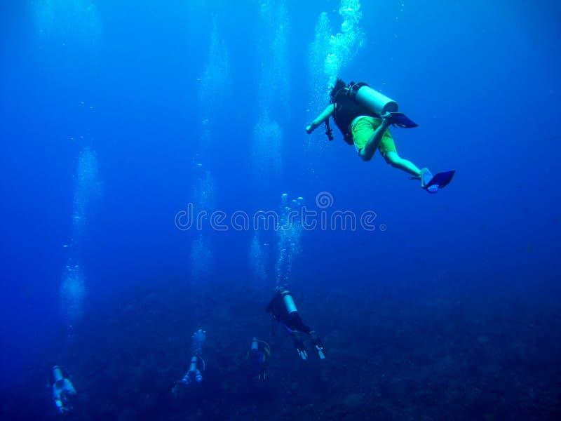 Scuba diving in Caribbean Sea royalty free stock photos
