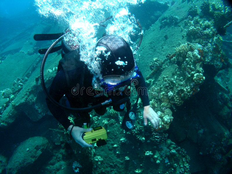 Scuba Diving on a sunken Wharf. In Maui Hawaii royalty free stock photography