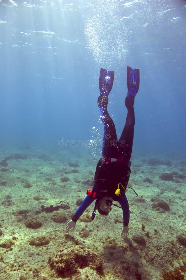 Scuba-duiker die handstand doen royalty-vrije stock foto's