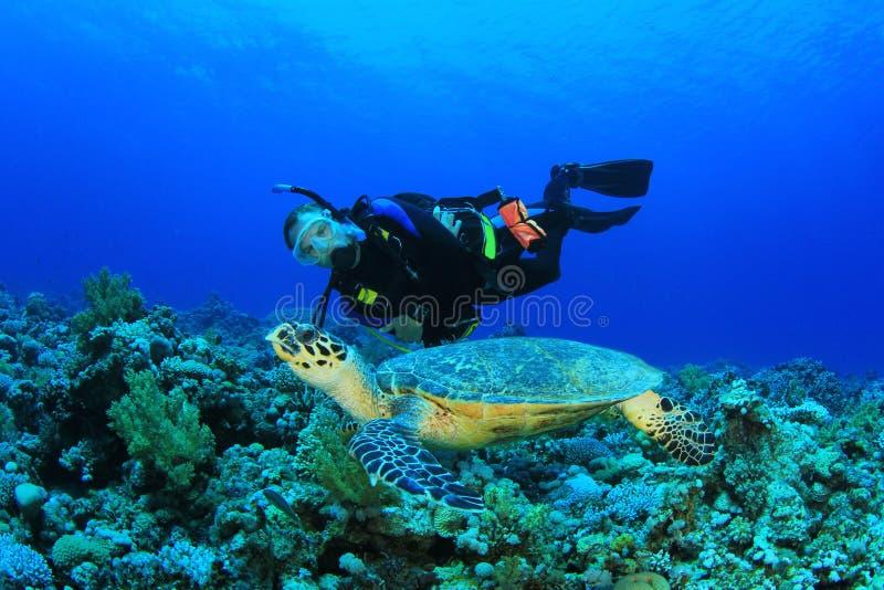 Scuba-duiker en Overzeese Schildpad stock foto