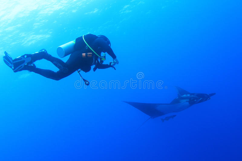 Scuba-duiker met mantastraal in Socorro Island, Mexico royalty-vrije stock fotografie