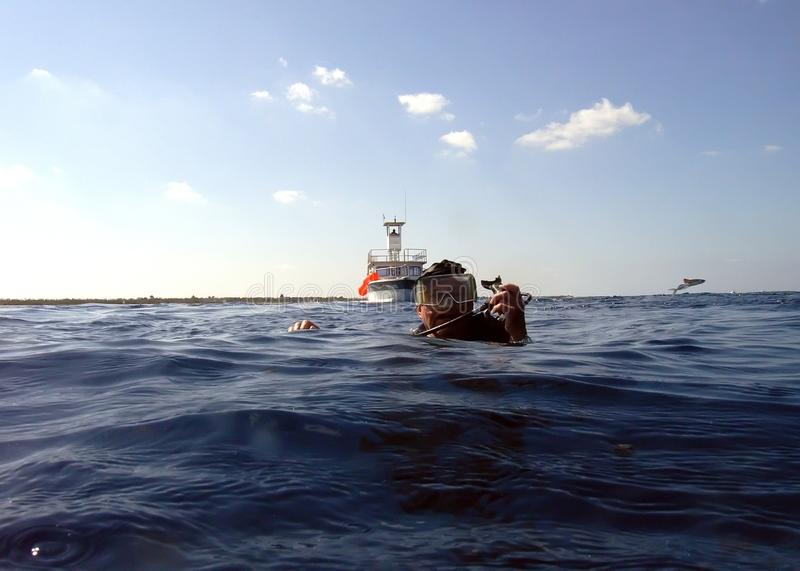 Scuba-duiker op de oppervlakte stock afbeelding