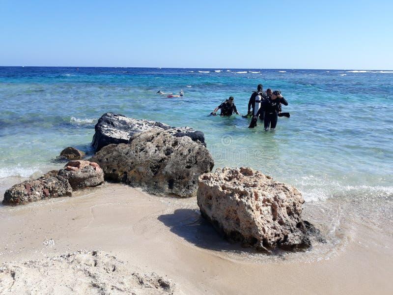 Scuba-duikers die in overzees van strand gaan stock afbeelding