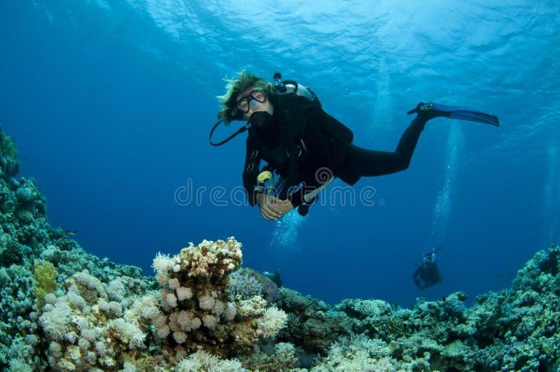 Scuba-duikers en koraal royalty-vrije stock afbeelding