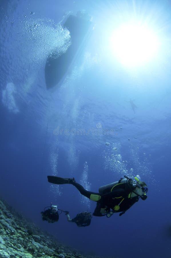 Scuba-duikers op koraalrif royalty-vrije stock afbeelding
