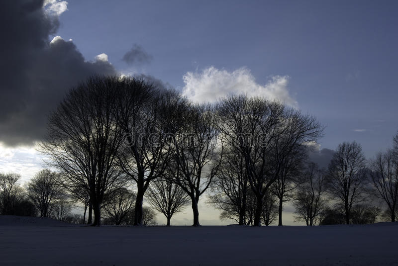 Scudding clouds over trees royalty free stock photos