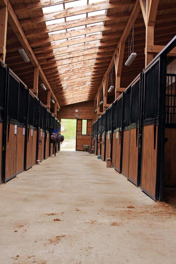Scuderia del cavallo fotografie stock libere da diritti