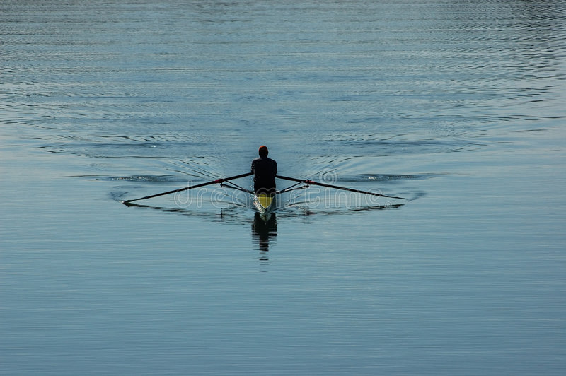 Sculler fotografia de stock royalty free