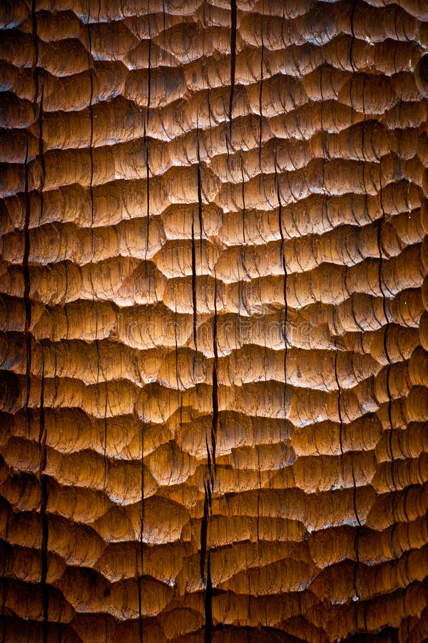 Sculpted wood background stock photo