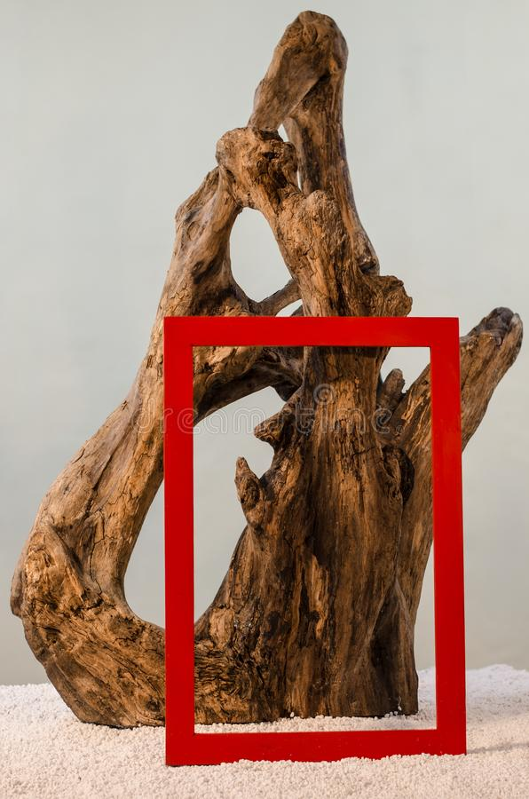 sculptural work of nature stock photography