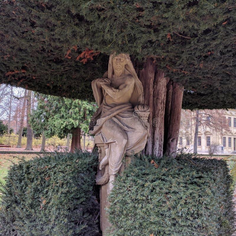 Sculpture à l'intérieur d'un arbre photos stock