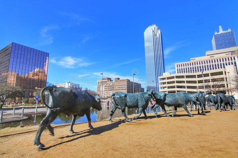 Sculpture. The Cattle Drive Sculpture at Pioneer Plaza with blue sky on a sunny day. The 49 bronze steers and 3 trail riders sculpture were created by artist royalty free stock photos