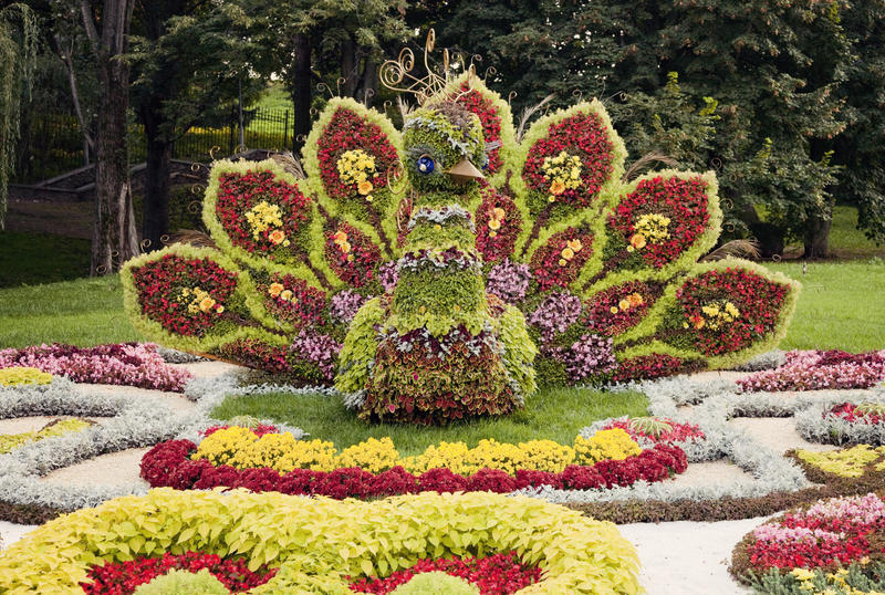 Sculpture colorée lumineuse en fleur de paon – floralies en Ukraine, 2012 photo libre de droits