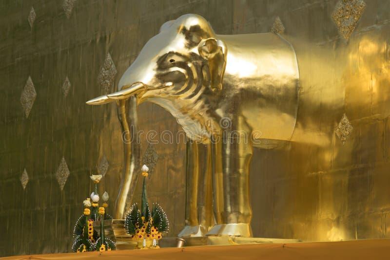 Sculpture d'or en éléphant avec l'offre dans le temple de Chiang Mai, Thaïlande photos libres de droits