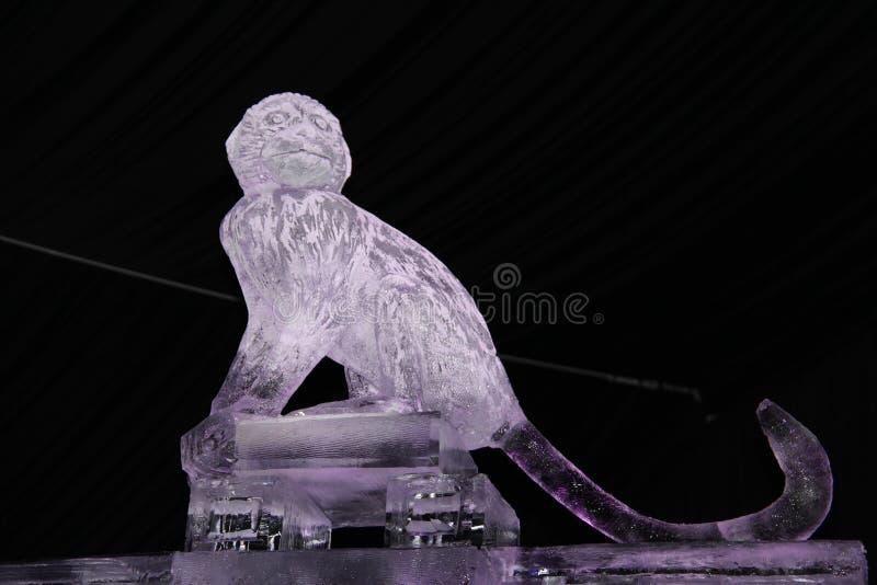 Sculpture d'un singe de glace photo stock