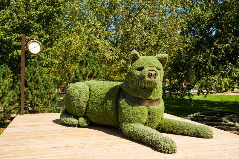 Sculpture de chien dans le jardin botanique de Montréal images stock