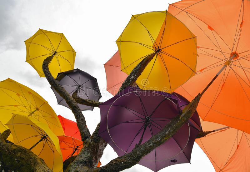 Sculpture de SINGAPOUR d'arbre avec les parapluies colorés contre le ciel bleu en parc public sur la route du sud de pont près de photographie stock libre de droits