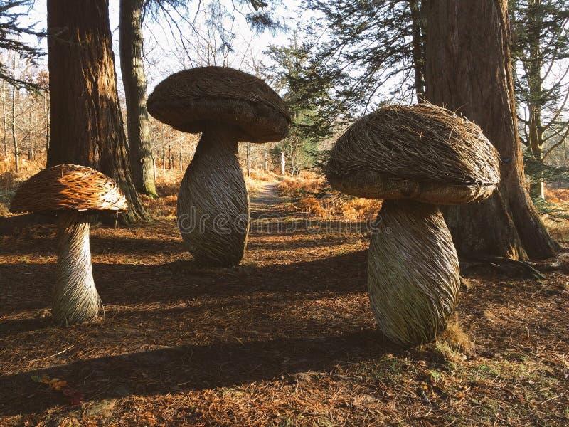 Sculpture en champignon d'automne image stock