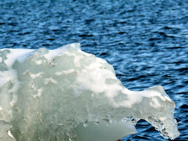 Sculpture en glace naturelle de lac toronto 2018 photo libre de droits
