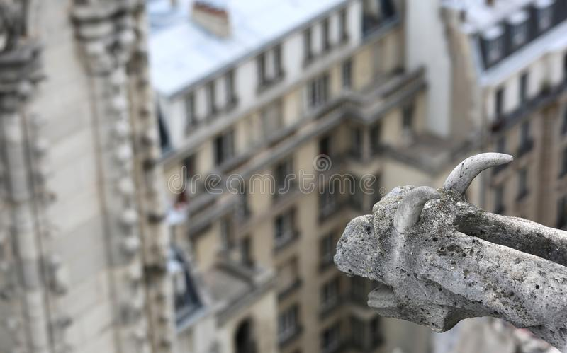 Gargoyle of the gothic church of Notre Dame in Paris. Sculpture of a gargoyle of the gothic church of Notre Dame in Paris royalty free stock images