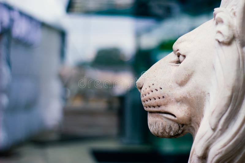 Sculpture of a lion`s head in profile. Serious king of beasts royalty free stock photography