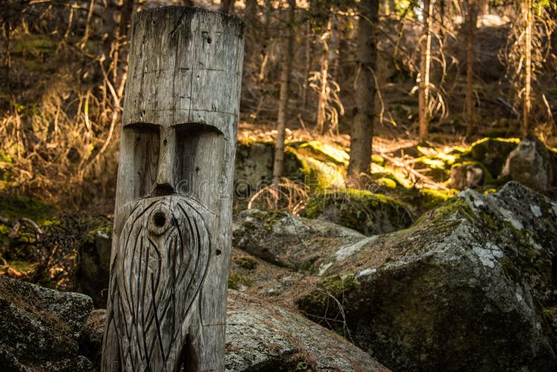 Sculpture in a tree. Stony path in a dark forest. Gentle sunlight between the trees. royalty free stock photography