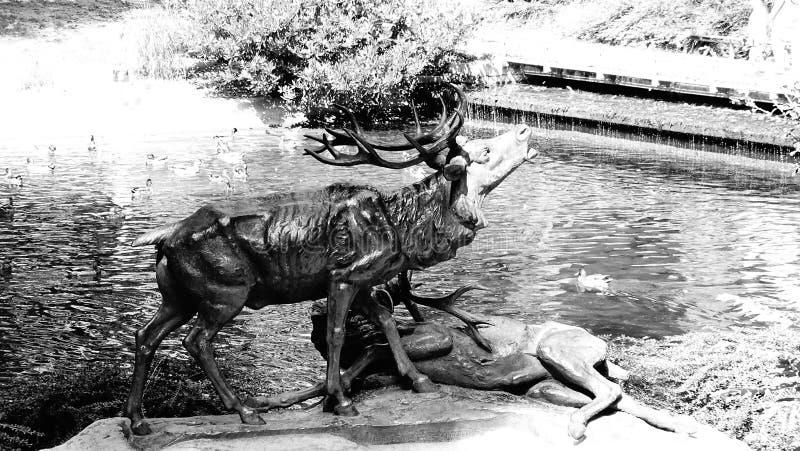 Scultura dei cervi nel parco immagini stock