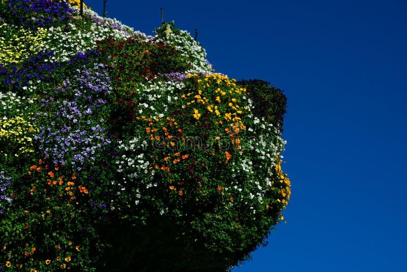 Scultura del cucciolo coperta di fiori dall'artista Jeff Koons fotografia stock