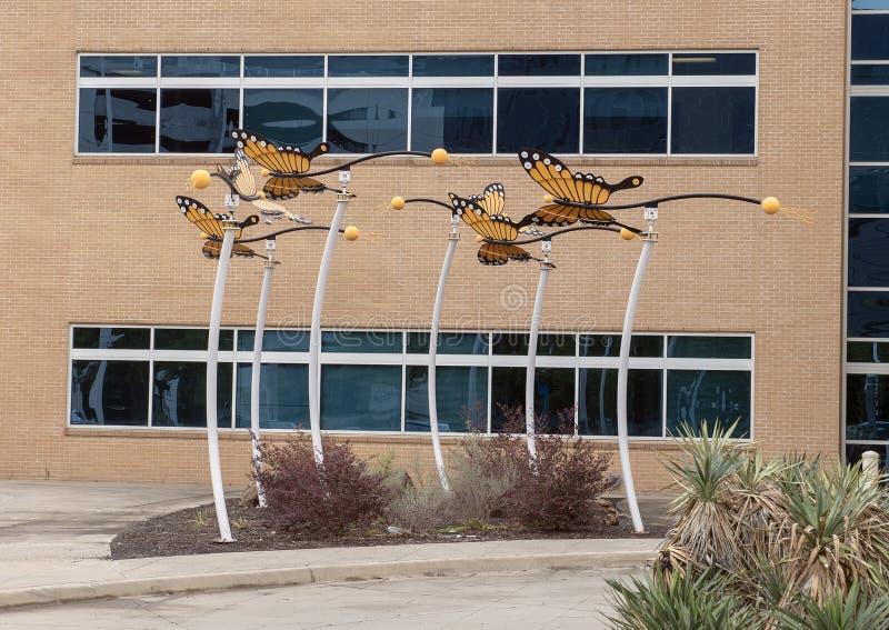 Scultura della farfalla di monarca da David Hickman fuori del centro ambulatorio della chirurgia di Parkland Simmons, Dallas, il  fotografia stock libera da diritti