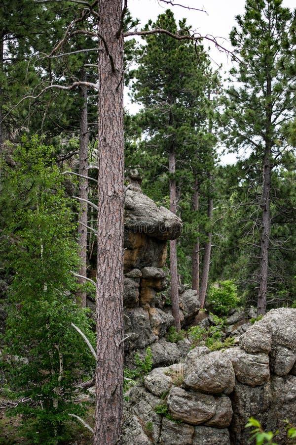 Scultura della roccia della natura fotografia stock