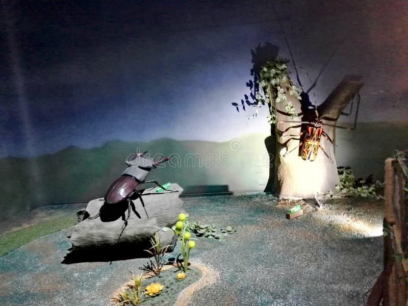 Scultura gigante dello scarabeo nel parco Jaime Duque immagini stock libere da diritti