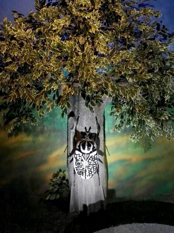 Scultura gigante dello scarabeo nel parco Jaime Duque fotografie stock libere da diritti