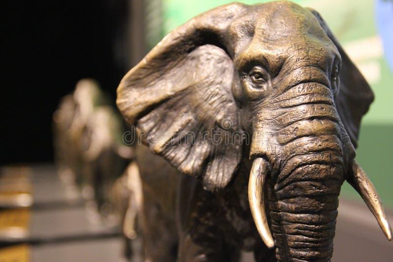 Sculture dei mammut e degli elefanti fotografia stock libera da diritti