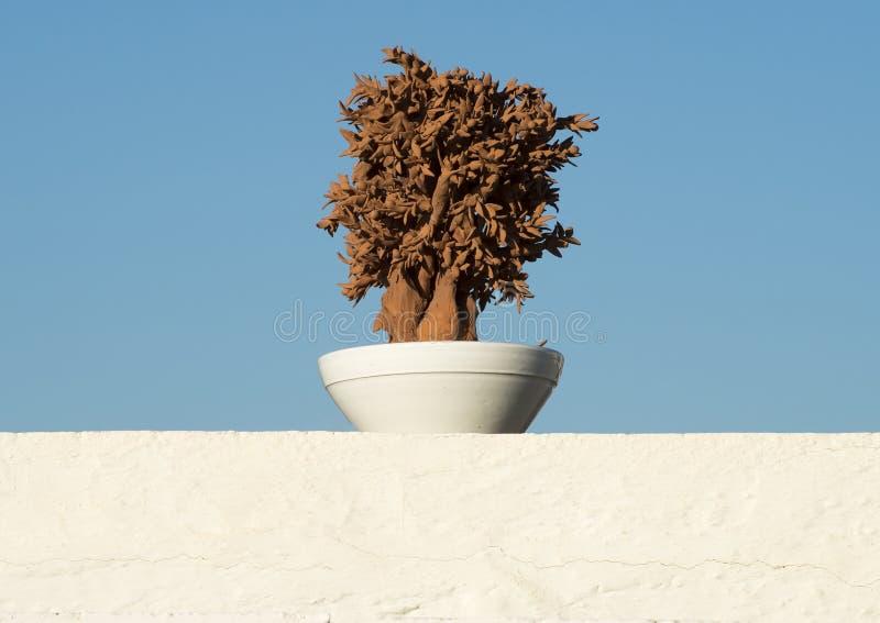 Sculture dell'argilla rossa di di olivo in una ciotola bianca su una parete bianca dello stucco fotografia stock