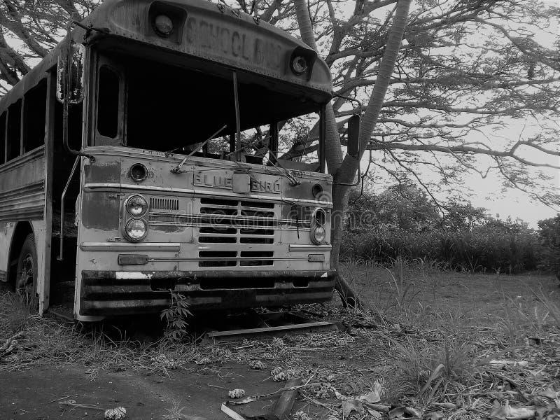 Scuolabus abbandonato immagini stock libere da diritti