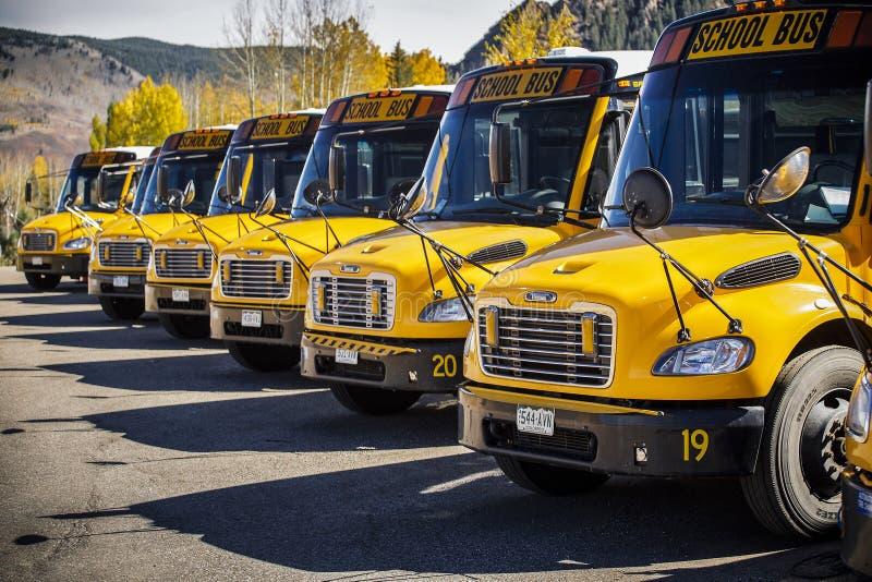 Scuolabus parcheggiato e che sta in una fila immagini stock libere da diritti