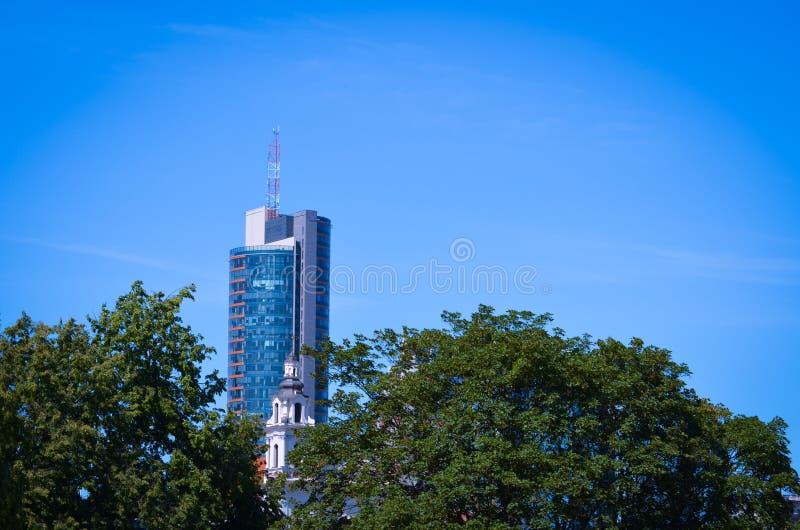 Scyscraper che guarda al cielo blu sul parco immagine stock
