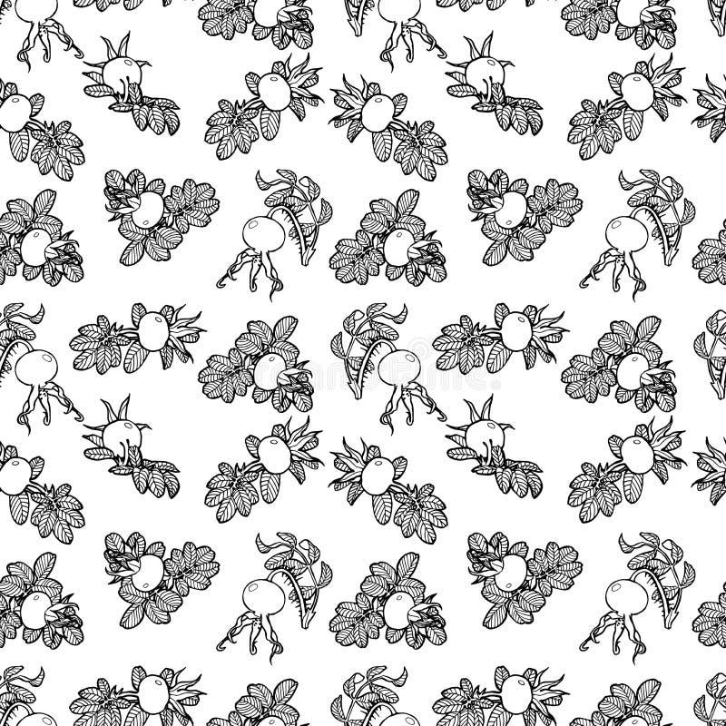 Download Sdog的样式上升了 向量例证. 插画 包括有 装饰, 模式, artsiest, 叶子, 无缝, 投反对票 - 72370924