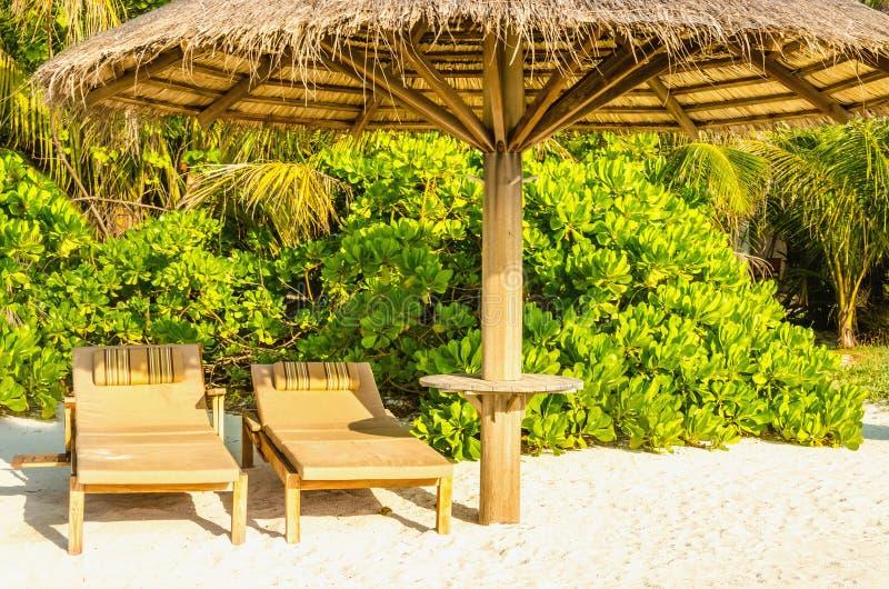 Sdrai di legno sotto un ombrello della palma su una spiaggia esotica sabbiosa con le palme alte fotografie stock