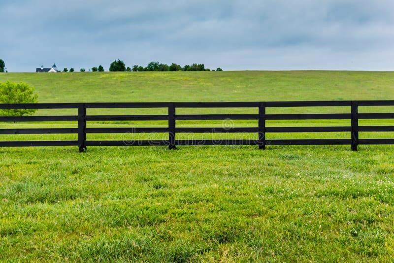 Seção da cerca e do pasto do cavalo foto de stock