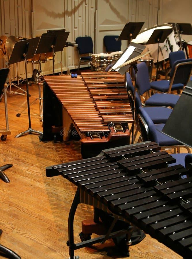 A seção da percussão fotografia de stock
