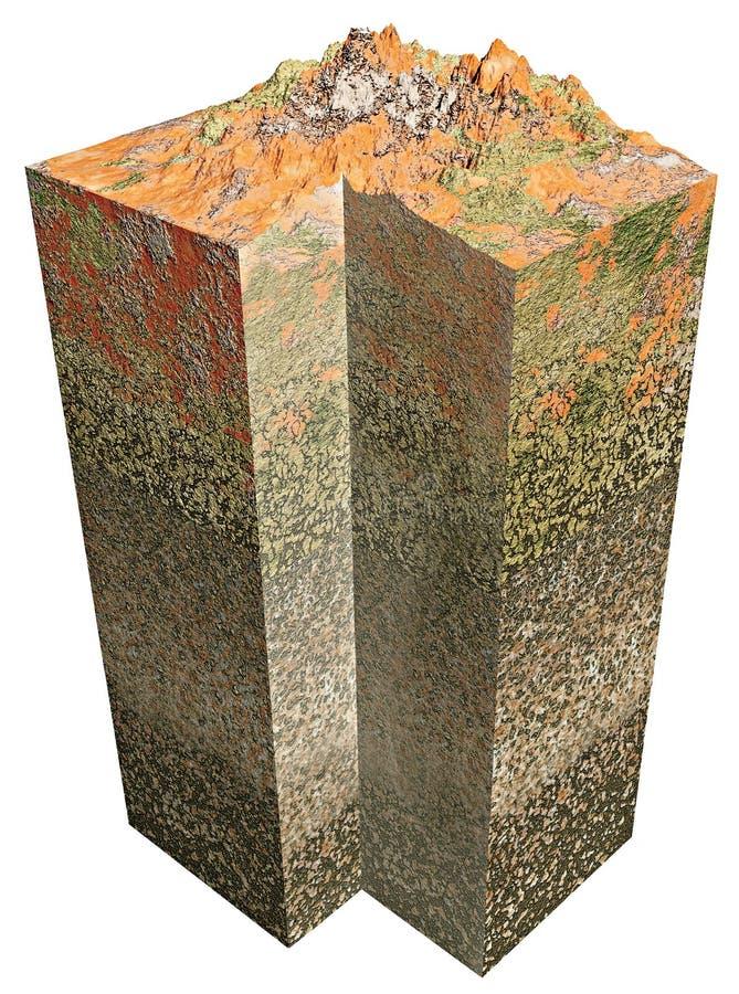 seção da terra 3d ilustração do vetor