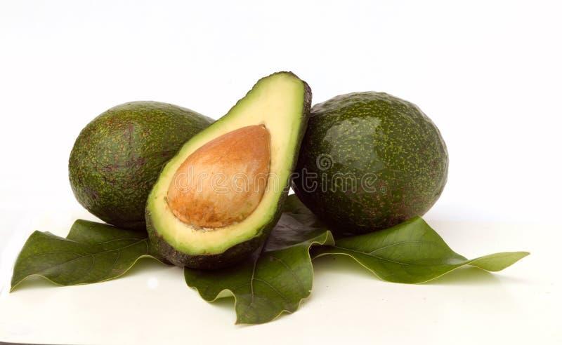 Seção de Avokados e de avokado imagem de stock royalty free