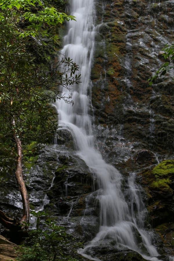 Seção de Mingo Falls imagens de stock