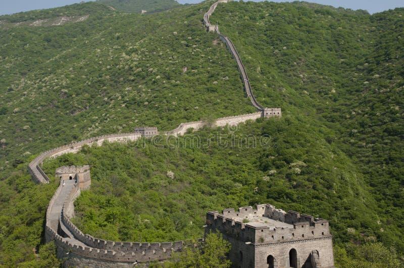 Seção de Mutianyu do Grande Muralha de China imagem de stock royalty free
