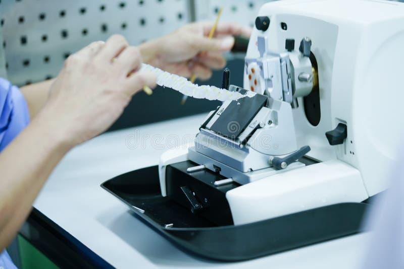 A seção giratória do Microtome para o diagnóstico na patologia faz o microsc fotos de stock royalty free